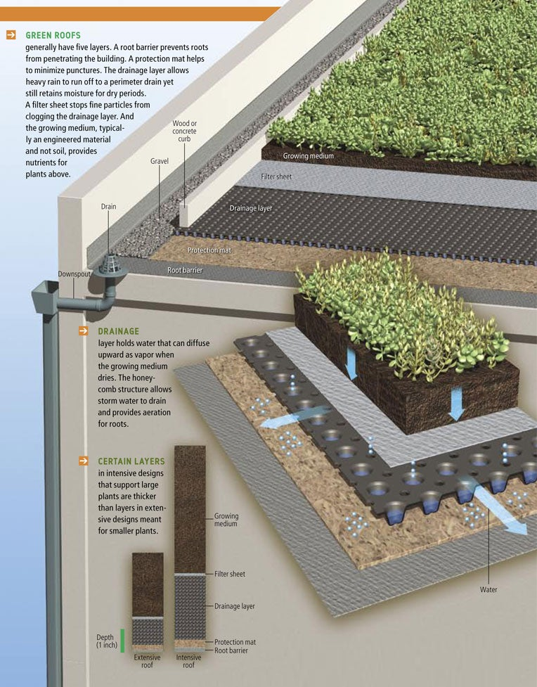 green roofs Well-designed examples of green roofs in residential and commercial settings pictures of green roofs around the world, including in the us and england.