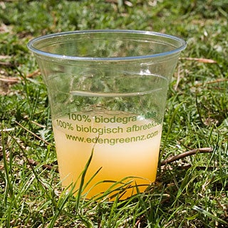 Compostable Corn Based Cup