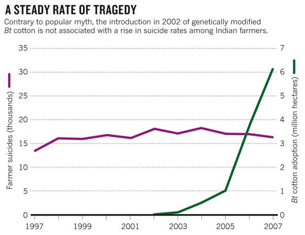A Steady Rate of Tragedy graph