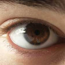 eyes of family members of people with autism more likely to have movement disorder