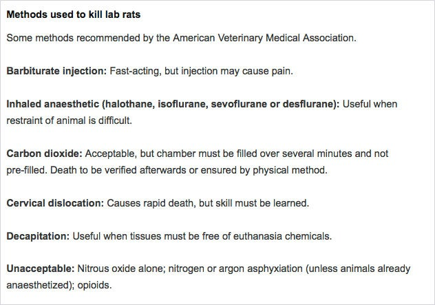 Best Way to Kill Lab Animals Sought - Scientific American