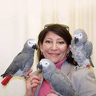 Irene Pepperberg and African Grey Parrots