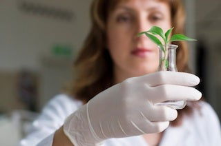 botanist with plant in beaker