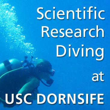News   Announcements   American Academy of Underwater Sciences Welcome to plantbasedresearch org an online narrative review of peer  reviewed scientific research papers and educational