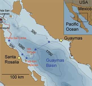 map</p><p>of squid expeidtion gulf of california