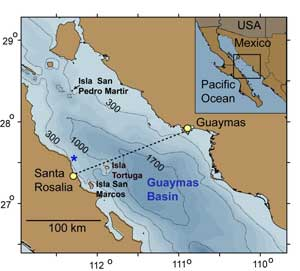 squid study expedition gilly map gulf california