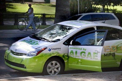 algaeus plug in hybrid