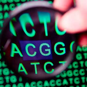 taking a look at genetic testing Genetic tests for susceptibility to opioid addiction are a case in point these tests claim to identify which individuals are most likely to become addicted to those pills aggressive marketing of such opioid addiction risk assessments has popped up in response to the growing concerns over the addiction epidemic.