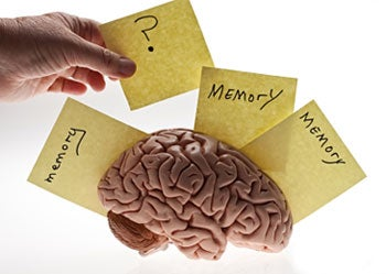 brain with faulty memory