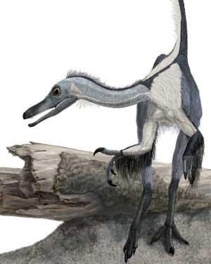 new_dinosaur.jpg