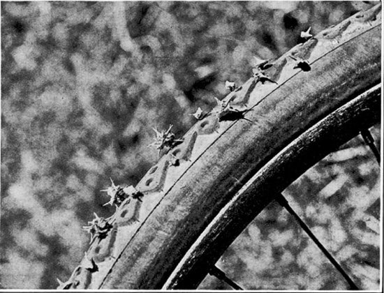 puncture plant through bike tire