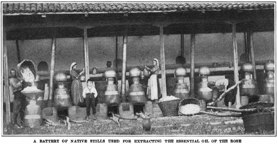 stills used for making rose oil