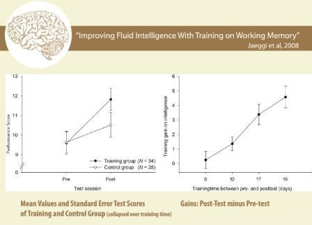 guest blog increase your intelligence ways maximize cognitive potential
