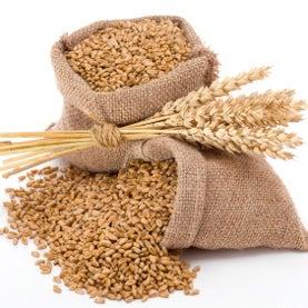 sacks of wheat