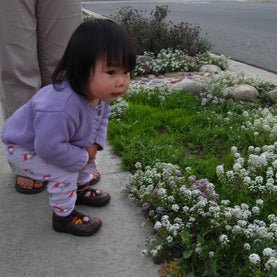 small girl stopping to smell the flowers