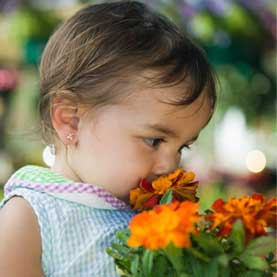Girl Smelling Marigolds