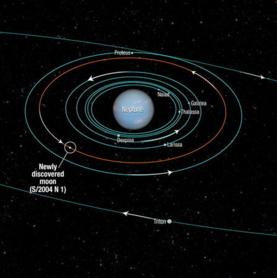 This diagram shows the orbits of several moons located close to the planet Neptune. All of them were discovered in 1989 by NASA's Voyager 2 spacecraft, with the exception of S/2004 N 1, which was discovered in archival Hubble Space Telescope images.