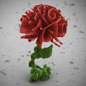 nanosculptured flora, nanoscale sculptures