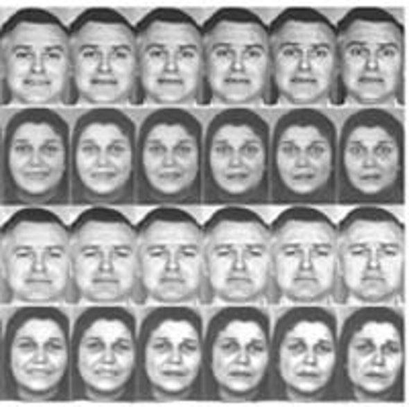 Past Experience Colors Perception of Facial Expressions