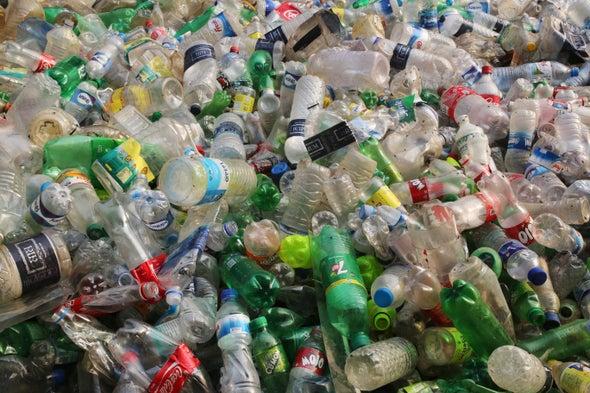 机器人能在回收危机后帮助回收吗?