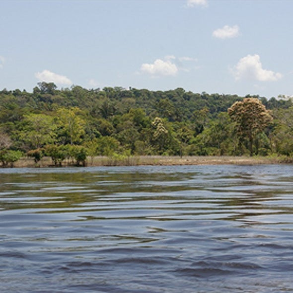 Charting a Course for Brazil's Rivers and Hydropower