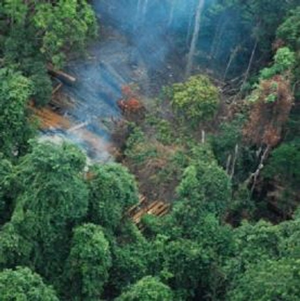 Amazon Be Dammed: Deforestation Undermines Future Viability of Brazil's Hydropower Projects
