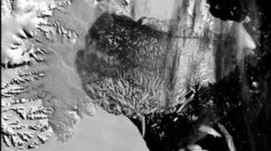 The Semantic Web in Action