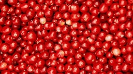A New Recipe for Counting Cranberries