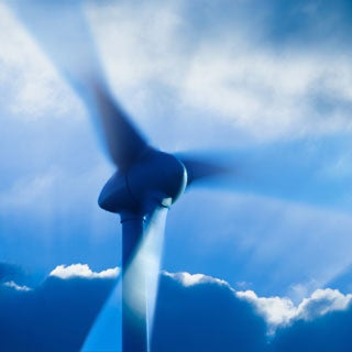 On a Wing and Low Air: The Surprising Way Wind Turbines Kill Bats