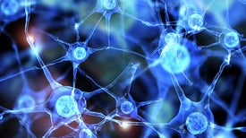 Serotonin Revived as a Possible Target for Autism Treatments