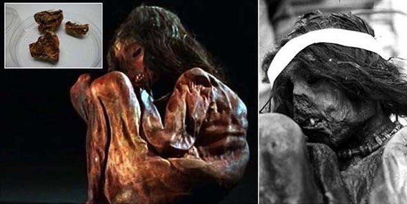 Incan Child Sacrificed to the Gods Reveals History of American Expansion