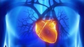 "Lab-Made Heart Represents ""Moonshot"" for 3-D Printing"