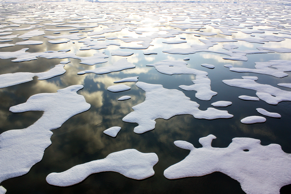 """Climate """"Tipping Points"""" Could Add Trillions to the Costs of Warming"""