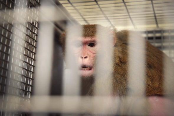 U.S. Government Takes Animal-Welfare Data Offline