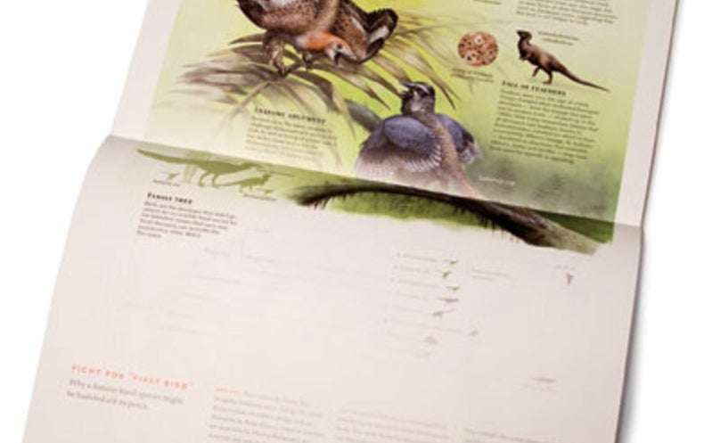Book Review: The Best American Infographics 2015