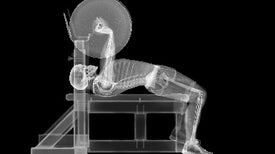 "Core Strength: Extreme ""Close-Ups"" May Help Explain Why Our Bones Are So Strong"