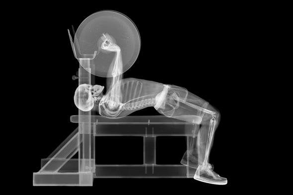 """Core Strength: Extreme """"Close-Ups"""" May Help Explain Why Our Bones Are So Strong"""