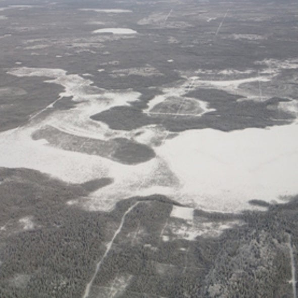 Why Is the Boreal Forest Breathing CO2 More Deeply?