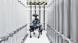 Doglike Robots Learn New Tricks