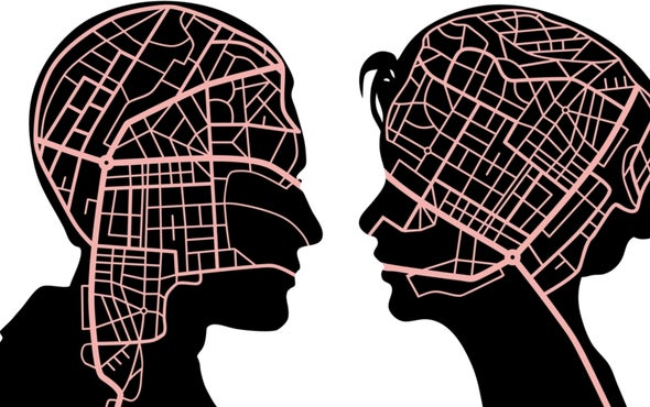 The Brain Cells behind a Sense of Direction