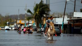 U.S. Is Unprepared for the Health Challenges of Climate Change, Experts Warn