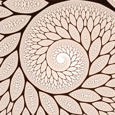 The Unreasonable Beauty of Mathematics [Slide Show]