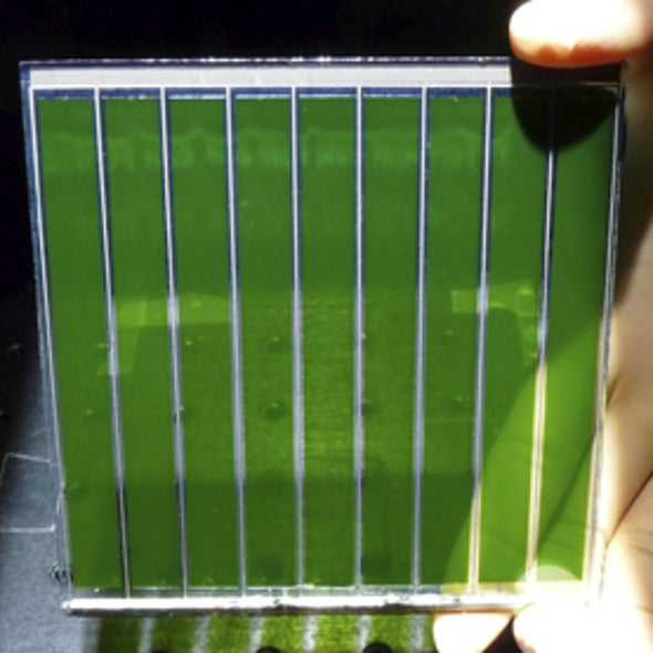 More Efficient Dyed Cells Offer Hope for Cheap Solar Windows