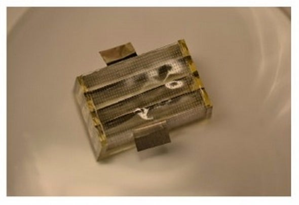 Biodegradable Battery Could Melt Inside the Body