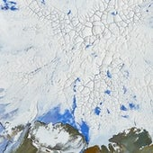 Detail, Arctic Melting, July 2016 (after NASA).