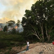 Dry Amazon Could See Record Fire Season
