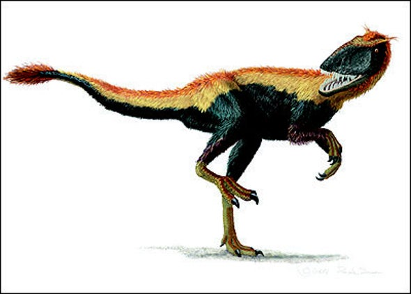 Feathered <i>T. rex</i> kin