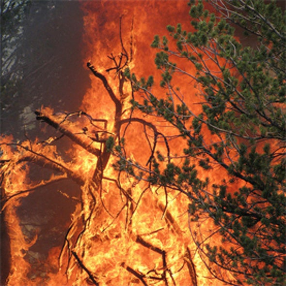 Researchers Find Link between Arctic Meltdown and Summer Floods and Fires