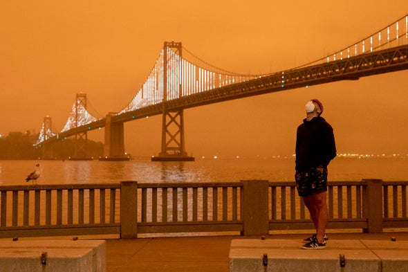 What the Acrid Smoke from Wildfires Can Teach Us