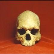 Skulls Add to